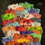 Calexico & Iron And Wine: Years To Burn, CD