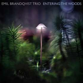 Emil Brandqvist (geb. 1981): Entering The Woods (180g) (Limited Edition) (signiert, exklusiv für jpc!), LP