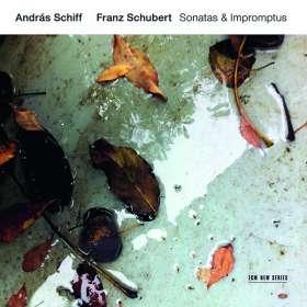 Franz Schubert, Diverse