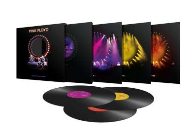 Pink Floyd: Delicate Sound of Thunder (180g), LP