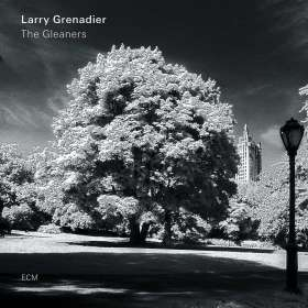 Larry Grenadier (geb. 1966): The Gleaners, CD