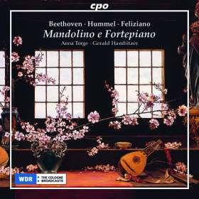 Mandolino e Fortepiano - Sonatas & Variazioni, CD