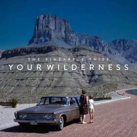 The Pineapple Thief: Your Wilderness, CD
