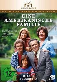 Eine amerikanische Familie Box 1, 3 DVDs