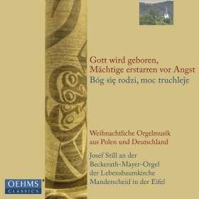 Weihnachtliche Orgelmusik aus Polen und Deutschland, CD