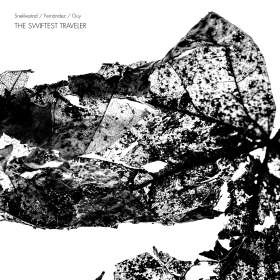 Torben Snekkestad, Agusti Fernández & Barry Guy: The Swifted Traveler, CD