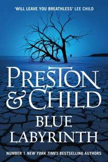 Blue labyrinth Cover