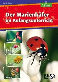 Der Marienkäfer im Anfangsunterricht Cover