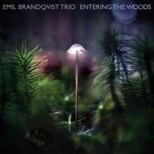 Emil Brandqvist (geb. 1981): Entering The Woods (180g) (Limited Edition) (signiert, exklusiv für jpc!), LP