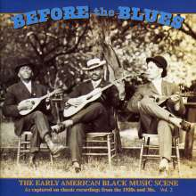 Before The Blues Vol. 2, CD