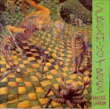 Screaming Trees: Invisible Lantern, LP