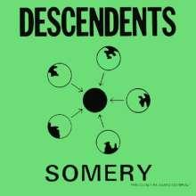 Descendents: Somery, 2 LPs