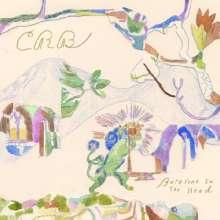 Chris Robinson Brotherhood: Barefoot In The Head, CD
