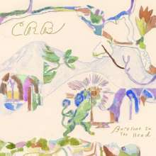 Chris Robinson Brotherhood: Barefoot In The Head, 2 LPs