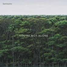Semisonic: You're Not Alone, CD