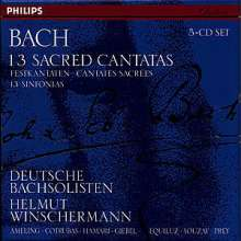 Johann Sebastian Bach (1685-1750): Kantaten BWV 32,51,56,57,74,82,128,134,, 5 CDs
