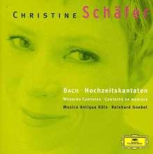 Johann Sebastian Bach (1685-1750): Kantaten BWV 51,202,210, CD