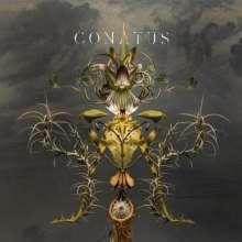 Joep Beving (geb. 1976): Conatus (Remix-Album) (180g), 2 LPs