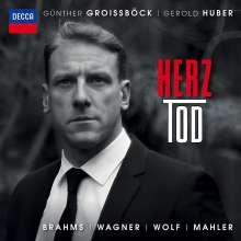 Günther Groissböck - HerzTod, CD