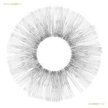 Wayne McGregor - Collaboration (180g), 2 LPs