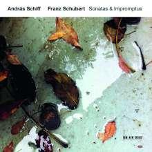 Franz Schubert (1797-1828): Klaviersonaten D.958 & D.959, 2 CDs
