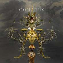 Joep Beving (geb. 1976): Conatus (Remix-Album), CD