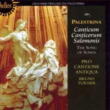 "Giovanni Pierluigi da Palestrina (1525-1594): Motetten ""Canticum canticorum Salomonis"", CD"