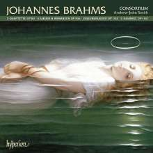Johannes Brahms (1833-1897): Vokalquartette op.64, CD