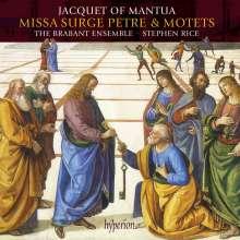 Jacquet of Mantua (1483-1559): Missa Surge Petre, CD