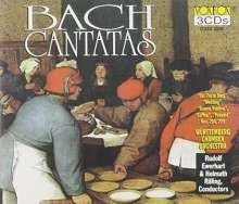 Johann Sebastian Bach (1685-1750): Kantate BWV 80,202,203,204,209,211,212, 3 CDs