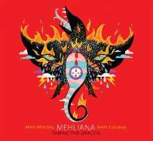 Brad Mehldau & Mark Guiliana: Mehliana - Taming The Dragon (140g), 2 LPs