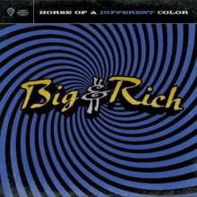 Big & Rich: Horse Of A Different Color, CD