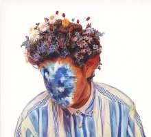 Hobo Johnson: The Fall Of Hobo Johnson, CD