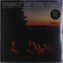Family Of The Year: Goodbye Sunshine Hello Nighttime, LP