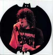 Deep Purple: Bat Shaped Interview Picture Disc, LP