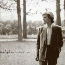 David Sylvian: Brilliant Trees, CD