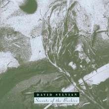 David Sylvian: Secrets Of The Beehive, CD
