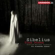 Jean Sibelius (1865-1957): Orchesterwerke, 2 CDs