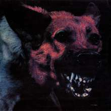 Protomartyr: Under Color Of Official Right, CD