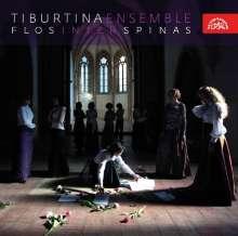 Tiburtina Ensemble - Flos inter Spinas, CD
