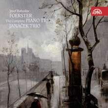 Josef Bohuslav Foerster (1859-1951): Klaviertrios Nr.1-3 (op.8,38,105), CD