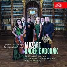 Wolfgang Amadeus Mozart (1756-1791): Kammermusik mit Horn, 2 CDs