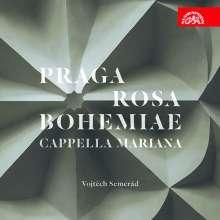 Praga Rosa Bohemiae, CD