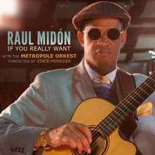 Raul Midón: If You Really Want, CD
