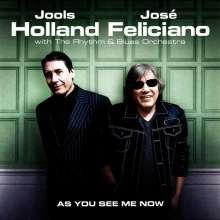 Jools Holland & José Feliciano: As You See Me Now, LP