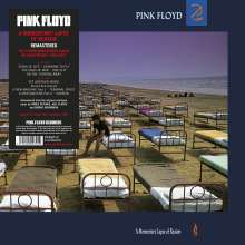 Pink Floyd: A Momentary Lapse Of Reason (remastered) (180g), LP