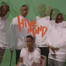 The Internet: Hive Mind, 2 LPs