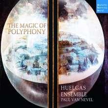 Huelgas Ensemble - The Magic of Polyphony, 3 CDs