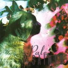 Pale Saints: The Comforts Of Madness 30th Anniversary Edition, 2 CDs