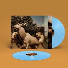 Interpol: Our Love To Admire (Limited Edition) (Sky Blue Vinyl), 2 LPs